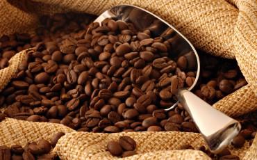 Светот на кафето